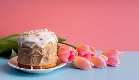 Easter concept. Easter cake with tulips on pink and blue background front view with copy space