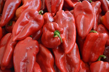 Sweet red pepper photo