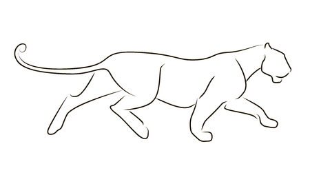 Running black line leopard on white background. Hand drawing vector graphic panther.