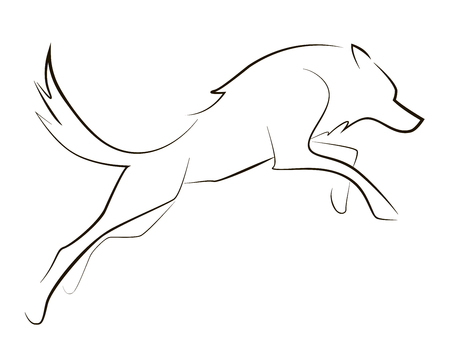 Running black line wolf on white background. Vector graphic.