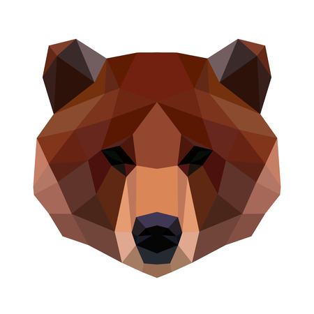 Vector polygonal bear isolated on white. Low poly cat illustration. Color vector simple animal predator image.