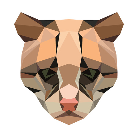 Vector polygonal ocelot isolated on white. Low poly cat illustration. Color vector simple animal predator image.