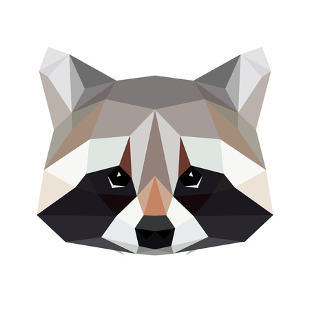 Vector polygonal raccoon isolated on white. Low poly cat illustration. Color vector simple animal predator image.