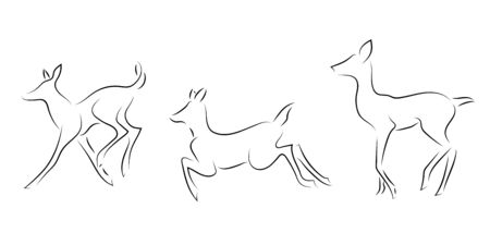 Standing black line deers on white background. Hand drawing vector graphic animals.