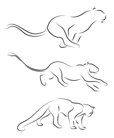 Running black line wild cats on white background. Hand drawing vector graphic wild cats.