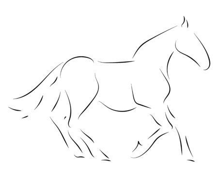 Black line horse on white background. Vector graphic. Illustration