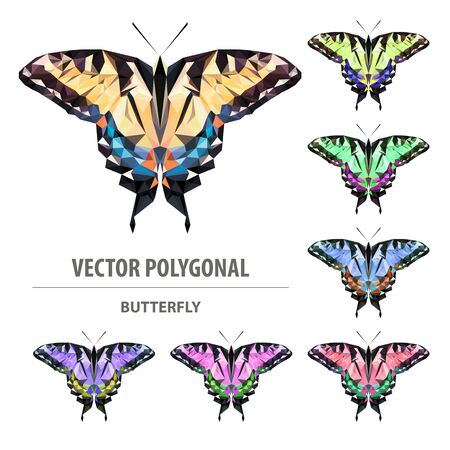 Vector polygonal butterfly. Low poly colorful illustration. Triangle color image.