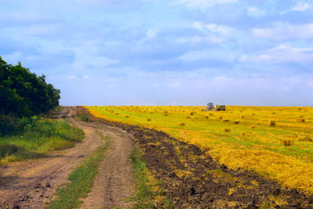 rural road at harvest in bright sunny day photo