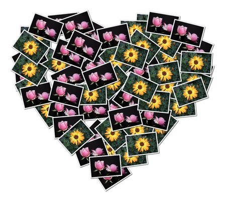 A heart-shaped collage made with pictures of flowers Stock Photo