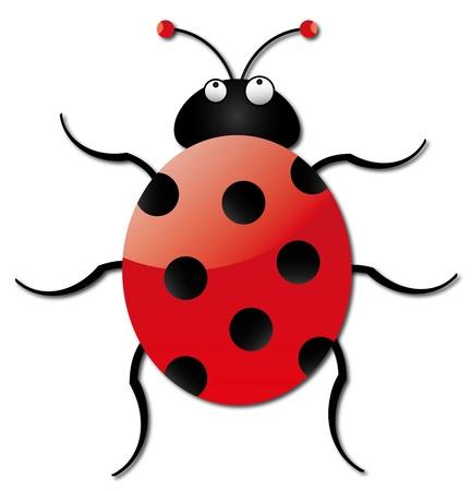 livery: A bright ladybug on a white background