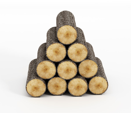 logwood: Wood logs isolated on white background.