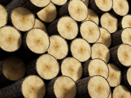 logwood: Wood logs stack Stock Photo