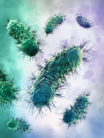 bacteria microscope: Green bacteria group under microscope