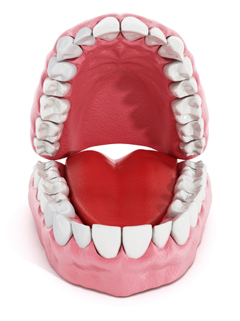 artificial teeth: Artificial teeth and lung model isolated on white background. 3D illustration.