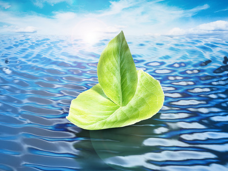 3d sail boat: Green leaves forming a ship floating on sea level. 3D illustration.