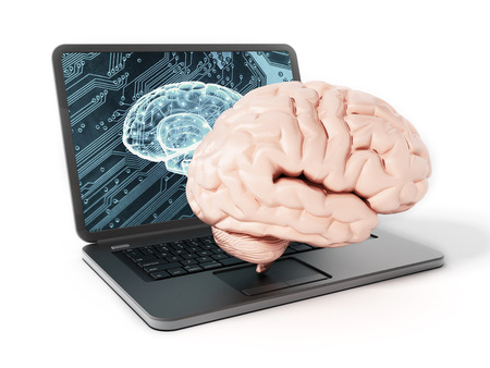 computer keyboard: Brain standing on laptop computer keyboard. 3D illustration.
