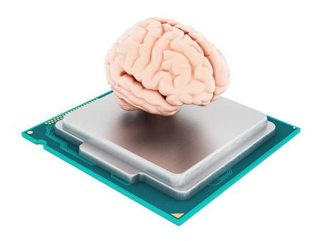 componentes: Microprocesador y cerebro humano aislado sobre fondo blanco. ilustración 3D Foto de archivo
