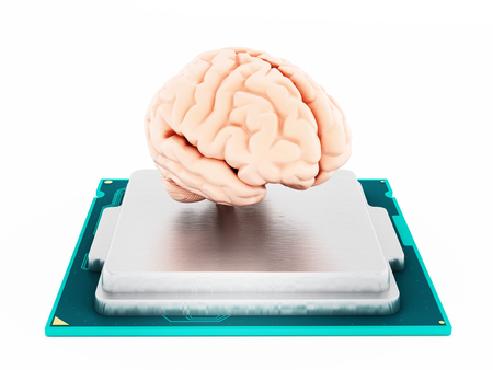 microprocessor: Microprocessor and human brain isolated on white background. 3D illustration