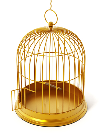 captive: Gold bird cage isolated on white background. 3D illustration.