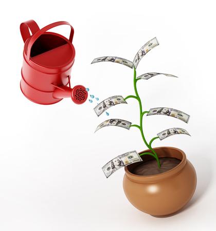 Watering of money plant with 100 dollar bills. 3D illustration.