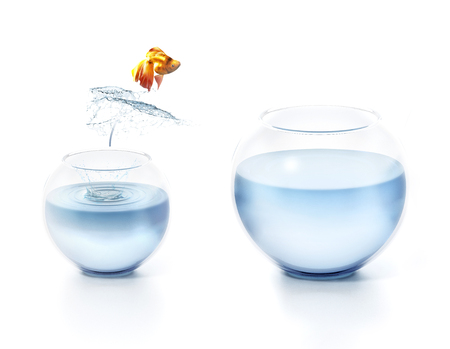 Fish jumping out of the bowl. 3D illustration.