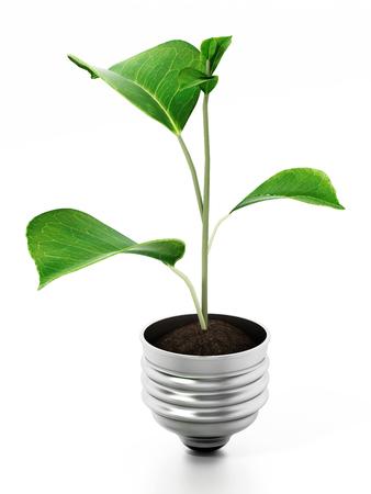 Leaf standing on top of the lightbulb base. 3D illustration.