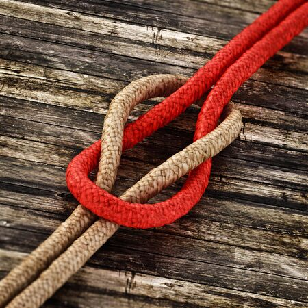 Tied ropes standing on wooden background. 3D illustration.
