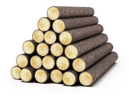 Heap of logs isolated on white background. 3D illustration.