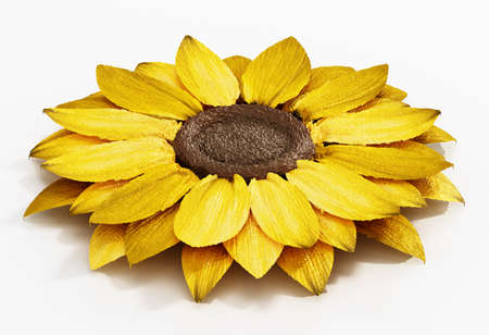 Generic 3D illustration of a flower with yellow petals. 3D illustration. Stockfoto