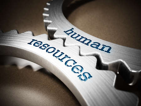 Two gears in motion with human resources text. 3D illustration.