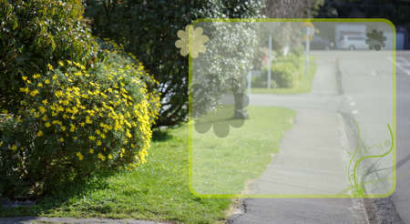 background template of front yard flower and street