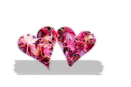 Valentine theme, of a couple of hearts clipping. Pink maple leaves as texture. Banco de Imagens