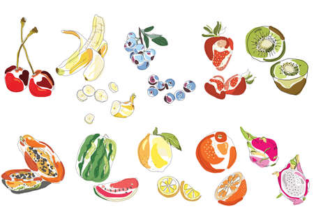 Set of vector hand drawn stylized fruits. 10 different fruits and berries.