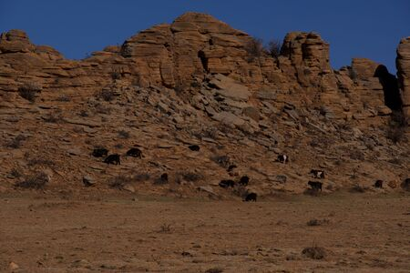 Panoramic view Baga Gazriin chuluu,Mongolian,Rock formation and stacked Stones at national park Mongolia