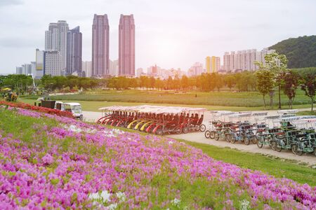 Beautiful landscape view of Taehwagang Grand Park at Ulsan Korea on April.