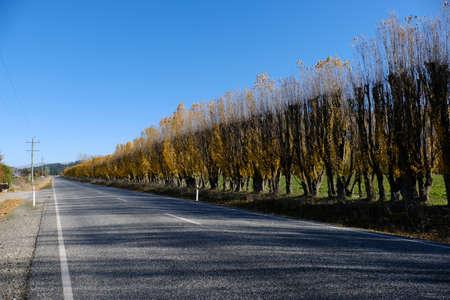 BEautiful long road at Newzealand.
