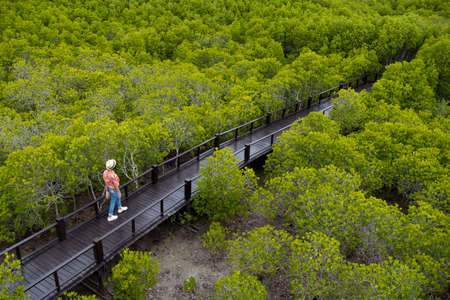 Young Asian girl walking at green mangrove forest at Pranburi Prachuap Khiri Khan Thailand.