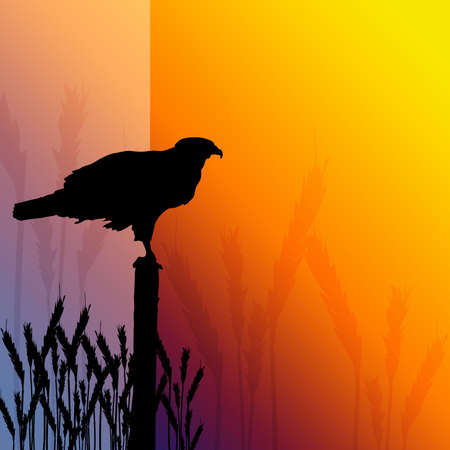 Illustrated silhouette of a hawk sitting on a fence post in a field of wheat. Stock Photo