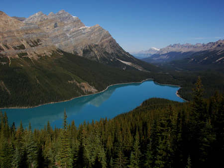 A clear day features the turquiose waters of Peyto Lake. Located in Banff National Park, this is a popular tourist destination on the Icefields Parkway.
