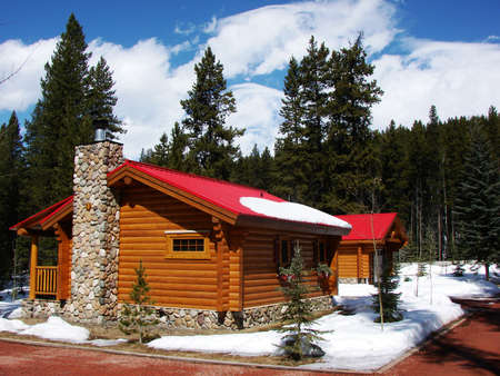 This wood cabin is surrounded by pine trees.