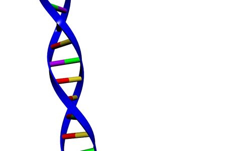 helical: DNA Double Helix(es). Copyspace. Isolated on white Stock Photo