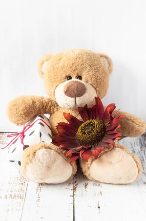 Plush soft toy teddy bear with flowers brown red sunflower and gift box. Greeting card. Childrens cute background for gift bags. Congratulations on Valentines Day, happy birthday, with love