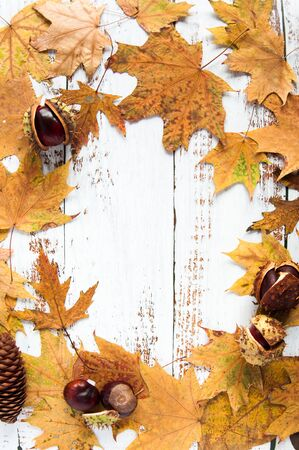 Autumn mood. Yellow, orange maple leaves on a wooden background. Lots of dry leaves and chestnuts. Natural materials