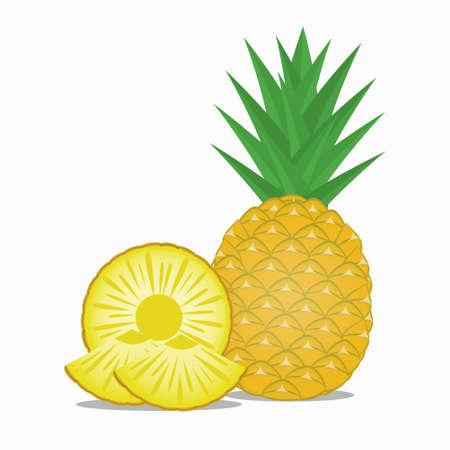Fresh Pineapple and Pineapple Slices.Vector illustration. Illustration