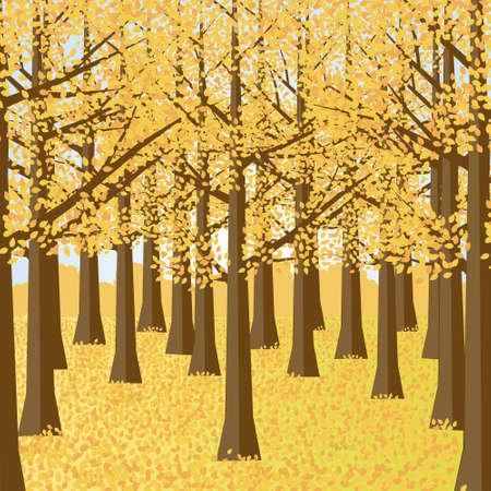 Autumn Forest Scenery.Autumn Garden Vector Illustration. Illustration
