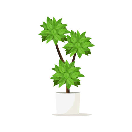 Flowerpot for home gardens, park and room decoration.Vector illustration.