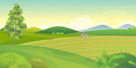 Green farm field scenery with mountains and hills on background, countryside landscape vector illustration. Illustration