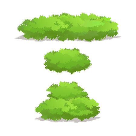 Set of Bush for Forest, Park and Garden Plants.Vector Illustration.