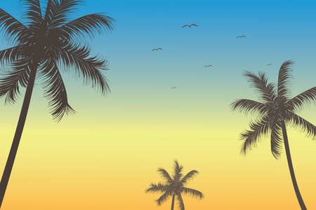 Vector illustration seashore dawn, early morning view with palm trees silhouette. Illustration