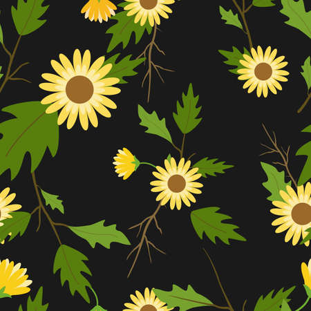 Floral seamless pattern with daisy flowers with black background.